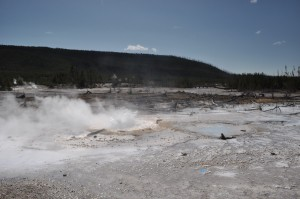 Steam Rising, Yellowstone National Park